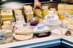 Lucerne cheese tasting