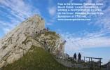 Free in the Wildness: Steinbock Safari. MOUNT PILATUS, SWITZERLAND.