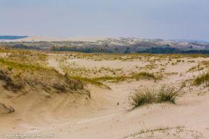 Parnidis landscape reserve